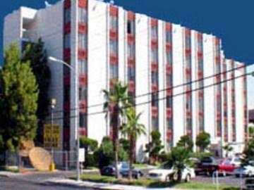 Golden Palm Casino 2